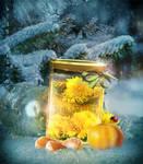 Dandelion Wine_Summer in a glass jar challeng