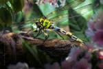 CyborgDragonfly by IgnisFatuusII