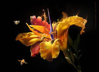 NectariferousFlower
