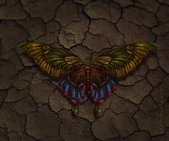 Butterfly+ video tutorial