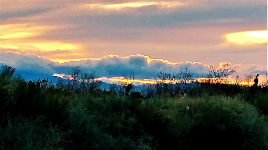 Clark County Wetlands 12 by Angelica777