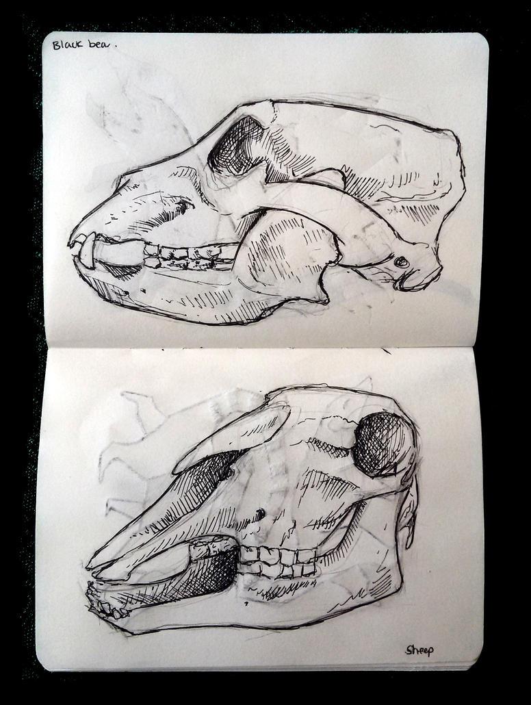 Sketch Book 003 by Kqeina
