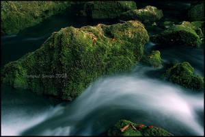 Rak stream by simon0108