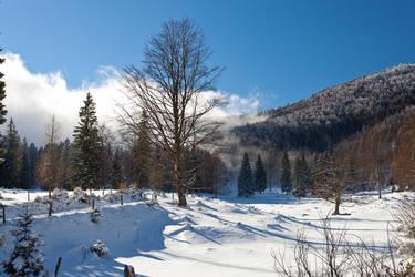 Feel Slovenia 2014
