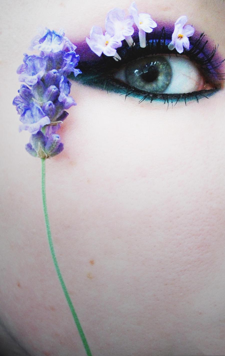 Lavender by Jennybicky