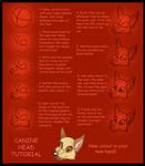 Canine Head Tutorial
