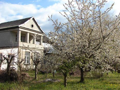 Old manor in springtime