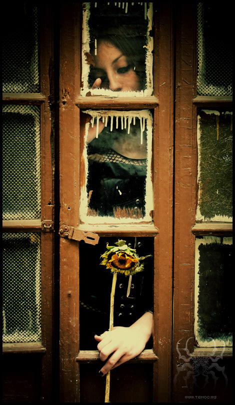 Closing Doors F : Behind closed doors by temoc on deviantart