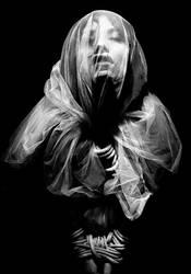 Sonoro Silencio by temoc