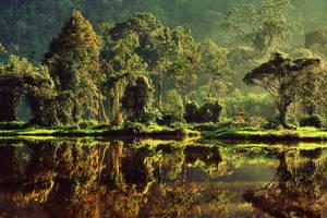 Morning at Situ Gunung III by juhe