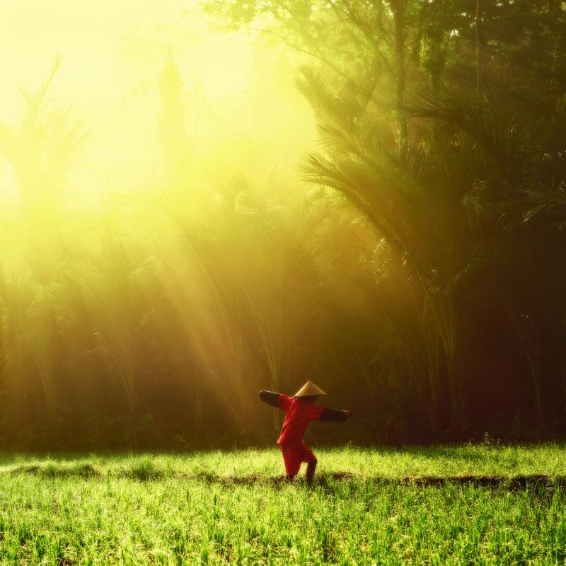 Morning Light >> Dance In The Morning Light By Juhe On Deviantart
