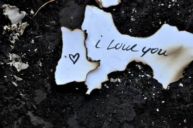 I'll Love You 'Till The End by sundayykota
