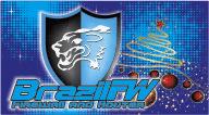 Logo BrazilFW B by kasgds