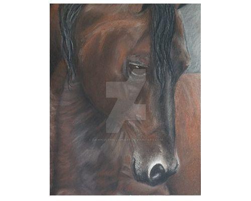 Brown-horse by dawnvermillionart