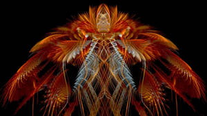 Majestic Wings  JWildfire Series #4