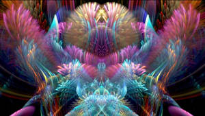In a Pastel Dream