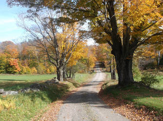 Old Country Road 42 by TheGreatWiseAss