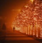 Winter Fire by sweet-solitudee