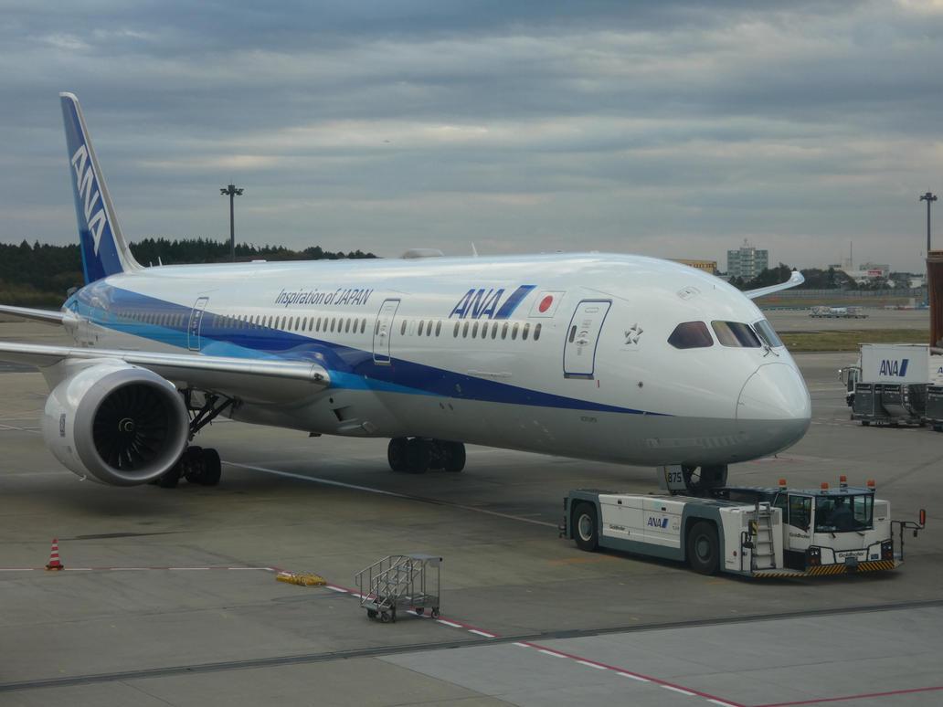 Narita 787 by babynuke