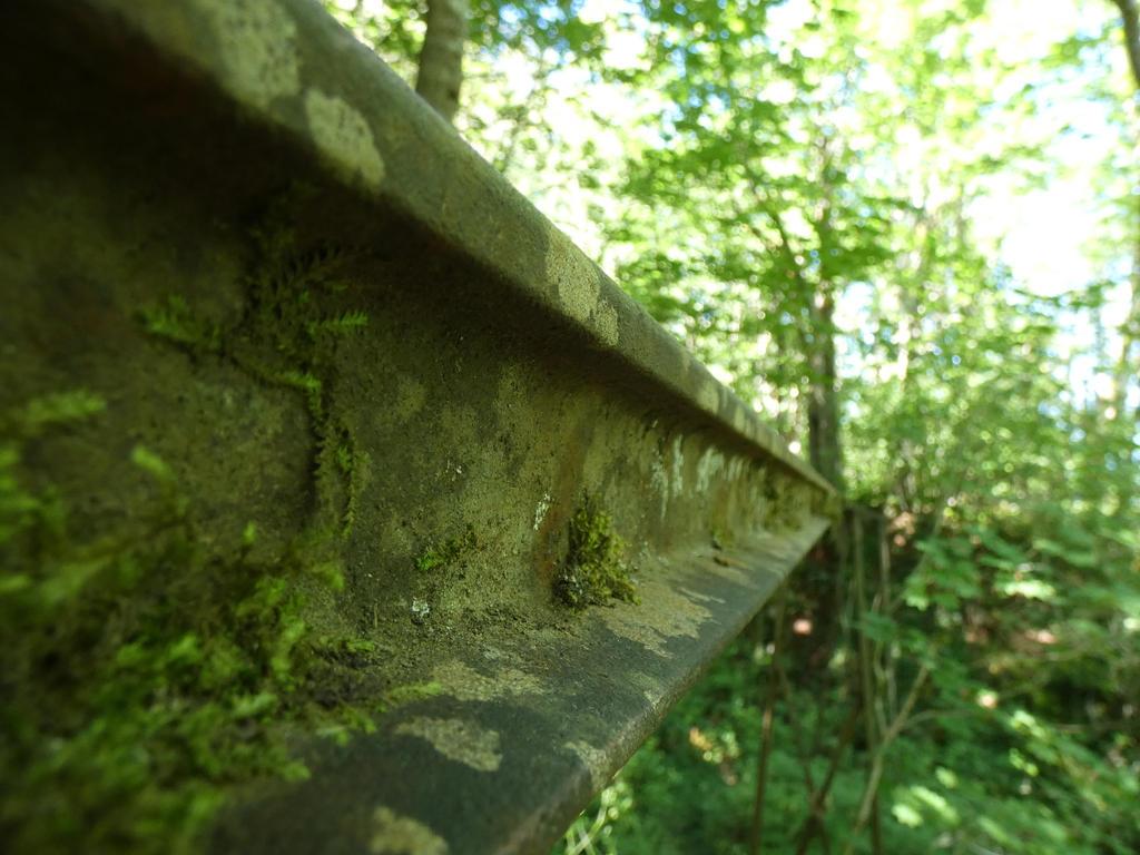 A track forgotten by babynuke