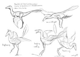 Flying ornithomimosaur sketches commission