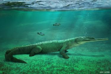 Mystriosuchus Commission by Inmyarmsinmyarms