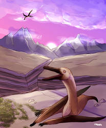Commission: Navajodactylus