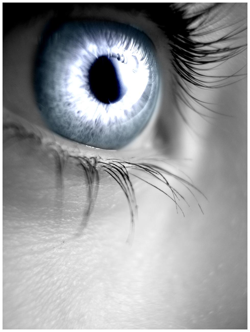 Residência Homam - Página 2 Silver_eye_by_sugargrl14