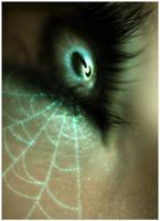Spider Web by Sugargrl14