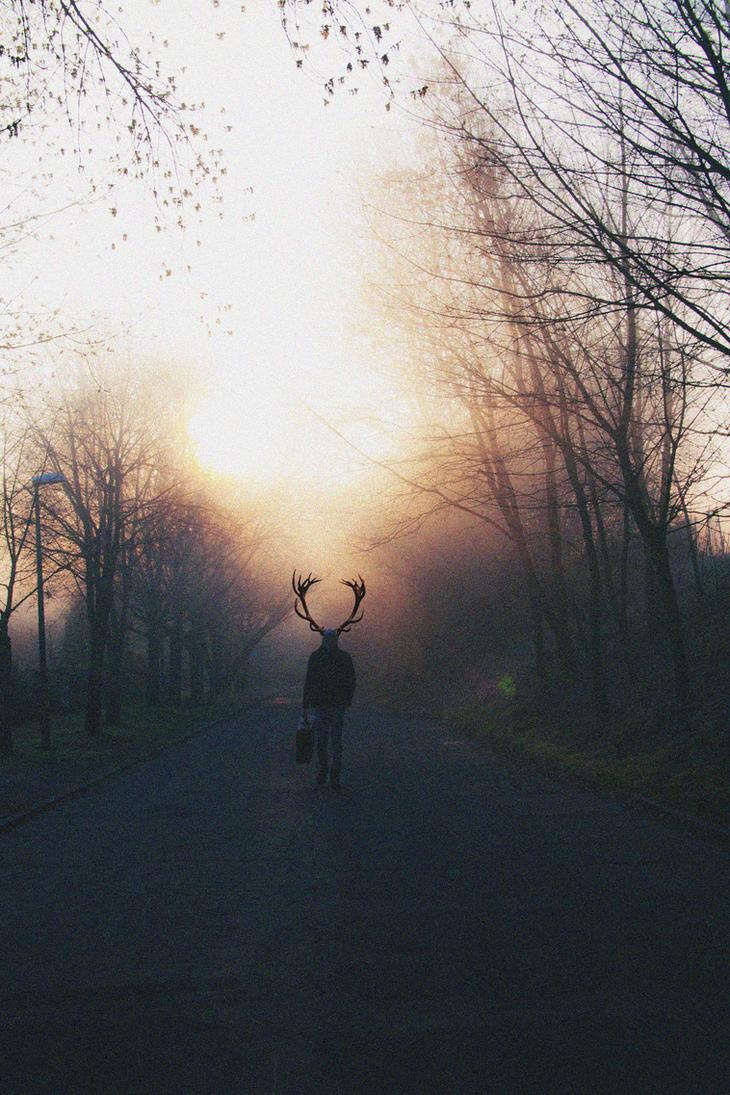 Deep Light by KevinDanzerImages