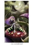 OC: Kailestel - Kai in Wonderland