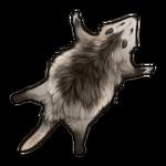 Opossum Pelt