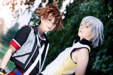 Kingdom Hearts 3D - the Path of Light
