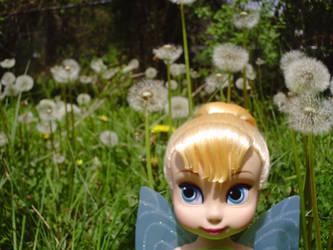 Field Of Wishes by Polka-dotPanda