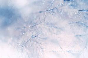 winter breeze by iCECREAMTRUCKFUCK