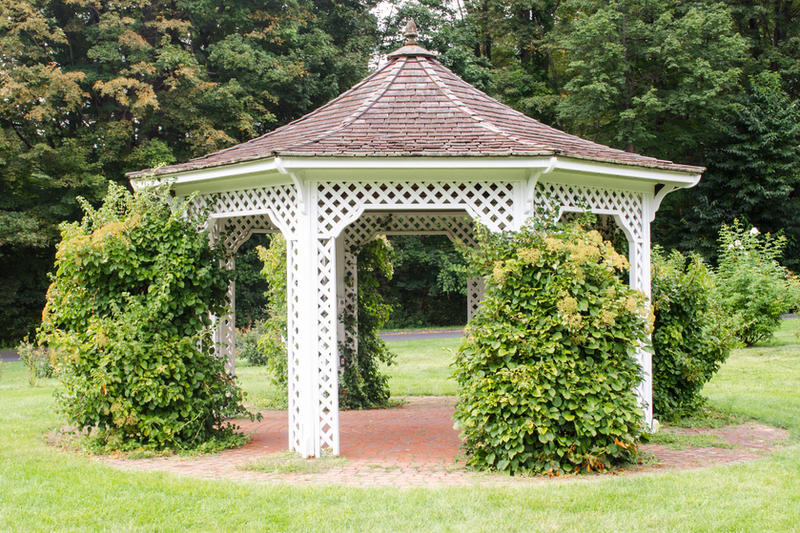 Gazebo by itznikki530