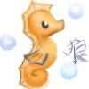Seahorse by ForestOokami