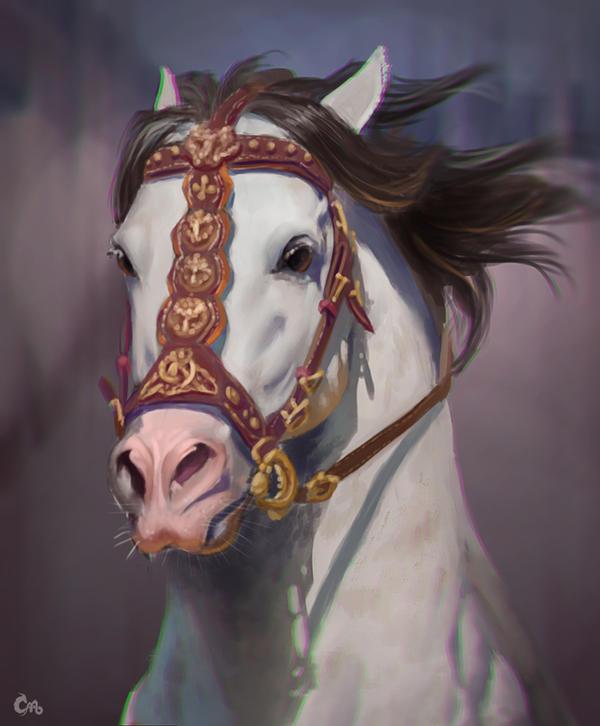 Horse study 05 by MilicaClk
