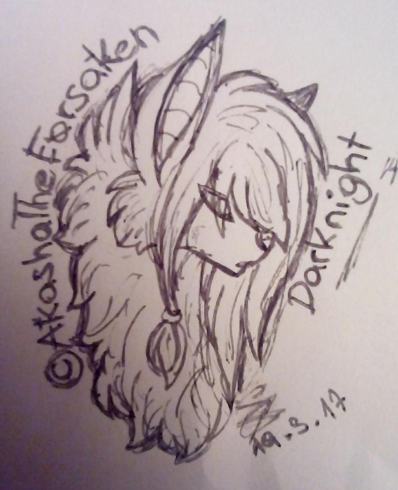 Darknight Doodle by AkashaTheForsaken