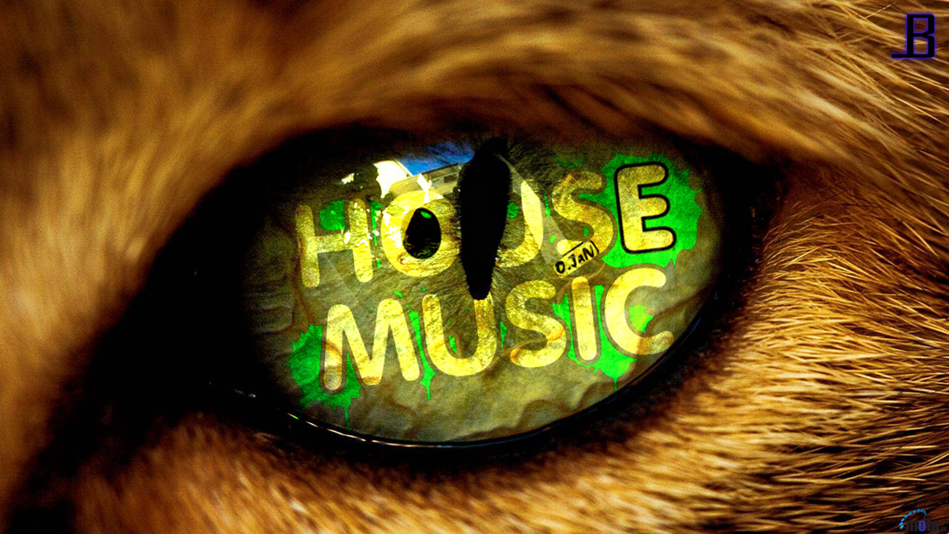 House music wallpaper hd by leadbeats on deviantart for House music house