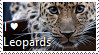 i Love Leopards Stamp by TheMoonRaven