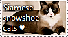 Siamese Snowshoe Cat Stamp by TheMoonRaven