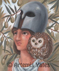 The Owl of Athena by Artemis-Yates