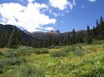 Blue Sky Meadow