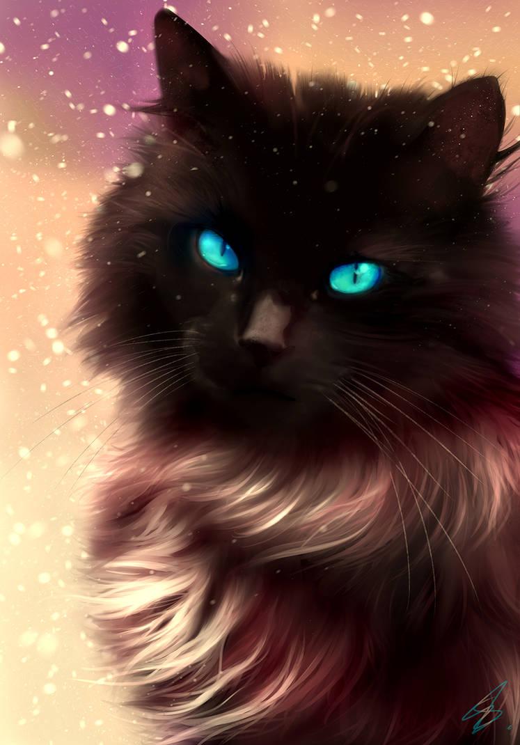 Xmas Cat - late upload!