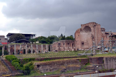 The archaeological area of the Palatine in Rome