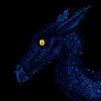 Juvenile dragon