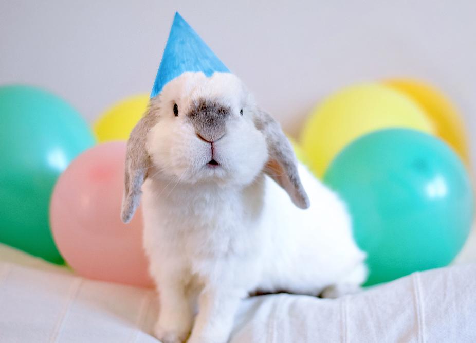 Birthday Boy by Exempeel
