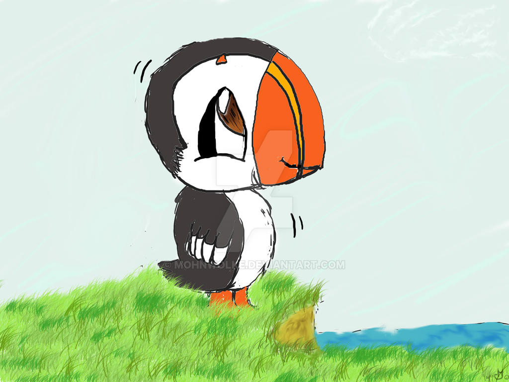 Cute Puffin Drawing