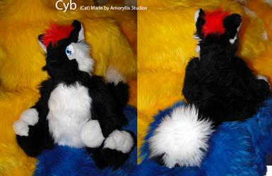 Cyb by amoryllis